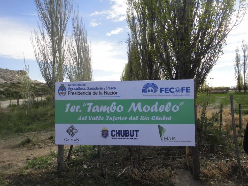 Tambo Modelo2