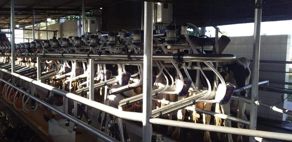 Ampliacion de equipo de ordene de 16 a 24 puntos con brazos extractores y medicion de leche