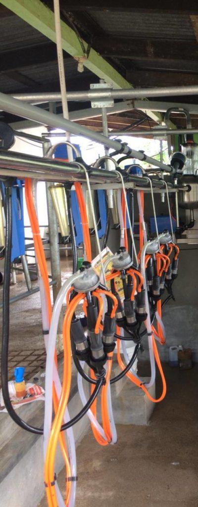 Equipo de Ordeñe 'RODEG 2700' de 4 bajadas en Juticalpa, Honduras