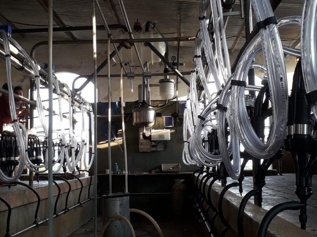 Instalamos Ordeñadora Rodeg Milenium de 20 bajadas en Nogoyá (Entre Ríos)