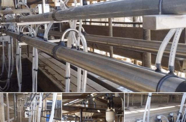 Instalamos Equipo de Ordeño Millenium de 10 bajadas con sistema de pulsado RG3 en Carrilobo